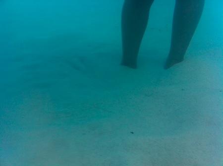 20110523 - AquaPac waterproof case - 3