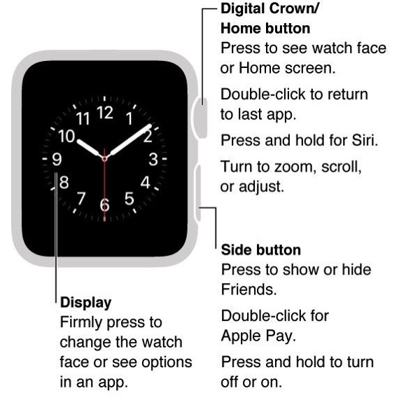 Apple Watch - Digital Crown and Side Button
