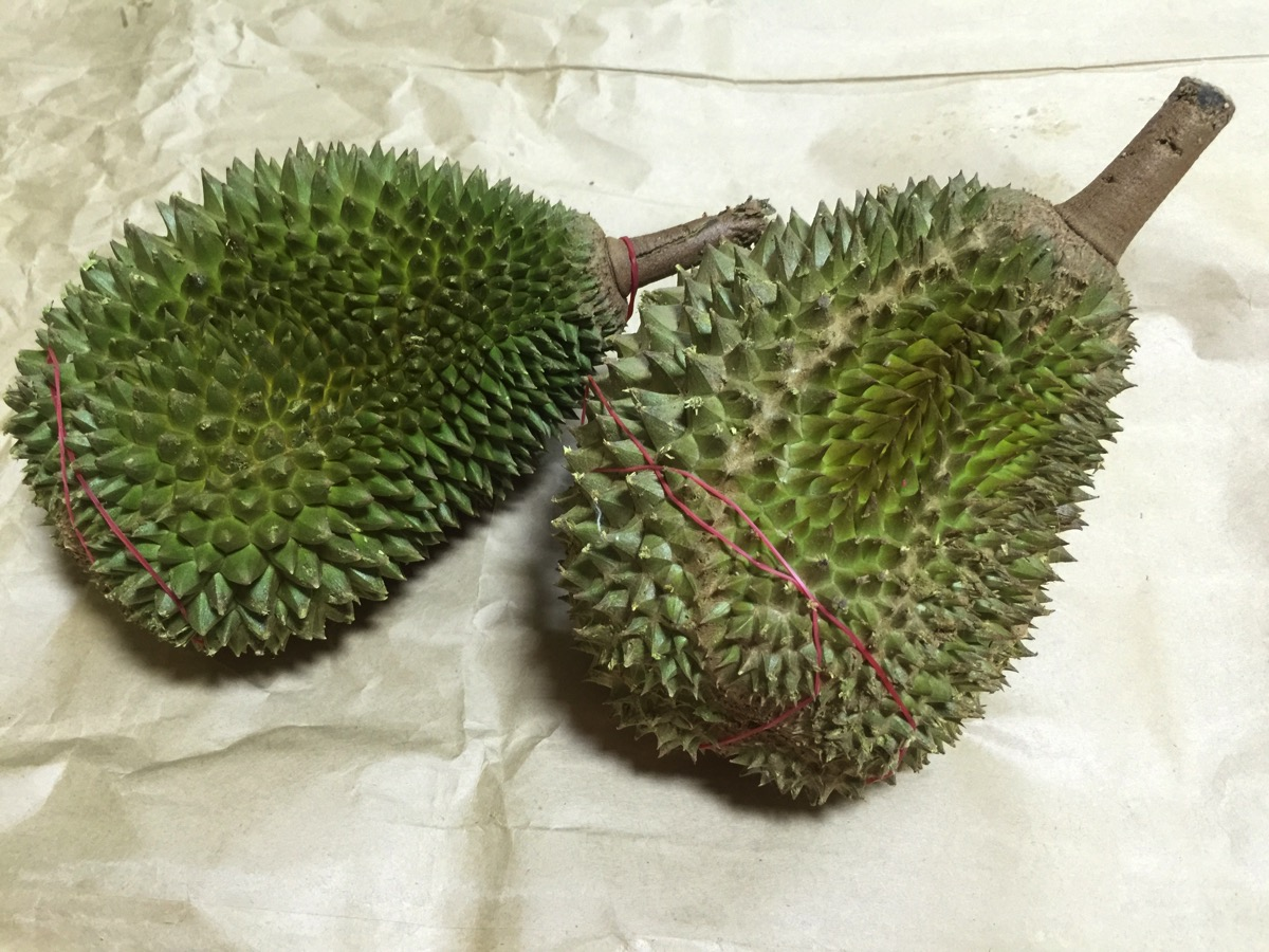 Maoshang Wang Durian - Outer fruit view - top