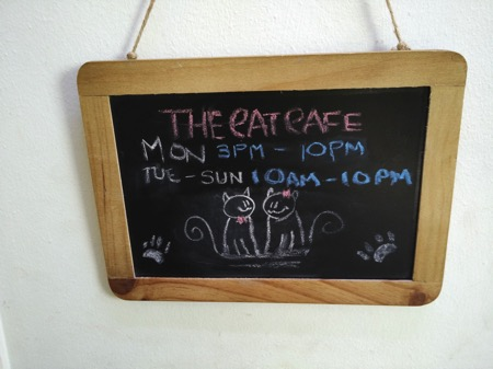 TheCatCafe - Signboard