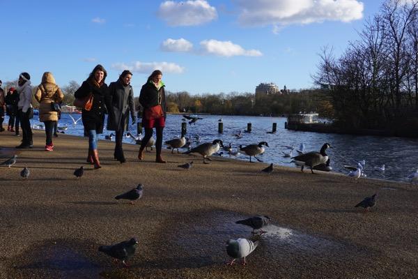Hyde Park - view 1