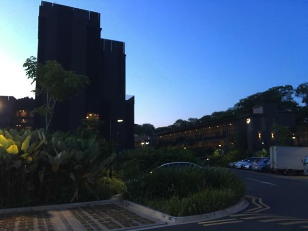 D'Resort - around the resort - room blocks