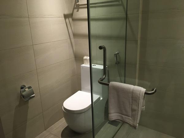 D'Resort - inside Park View room - toilet area 2
